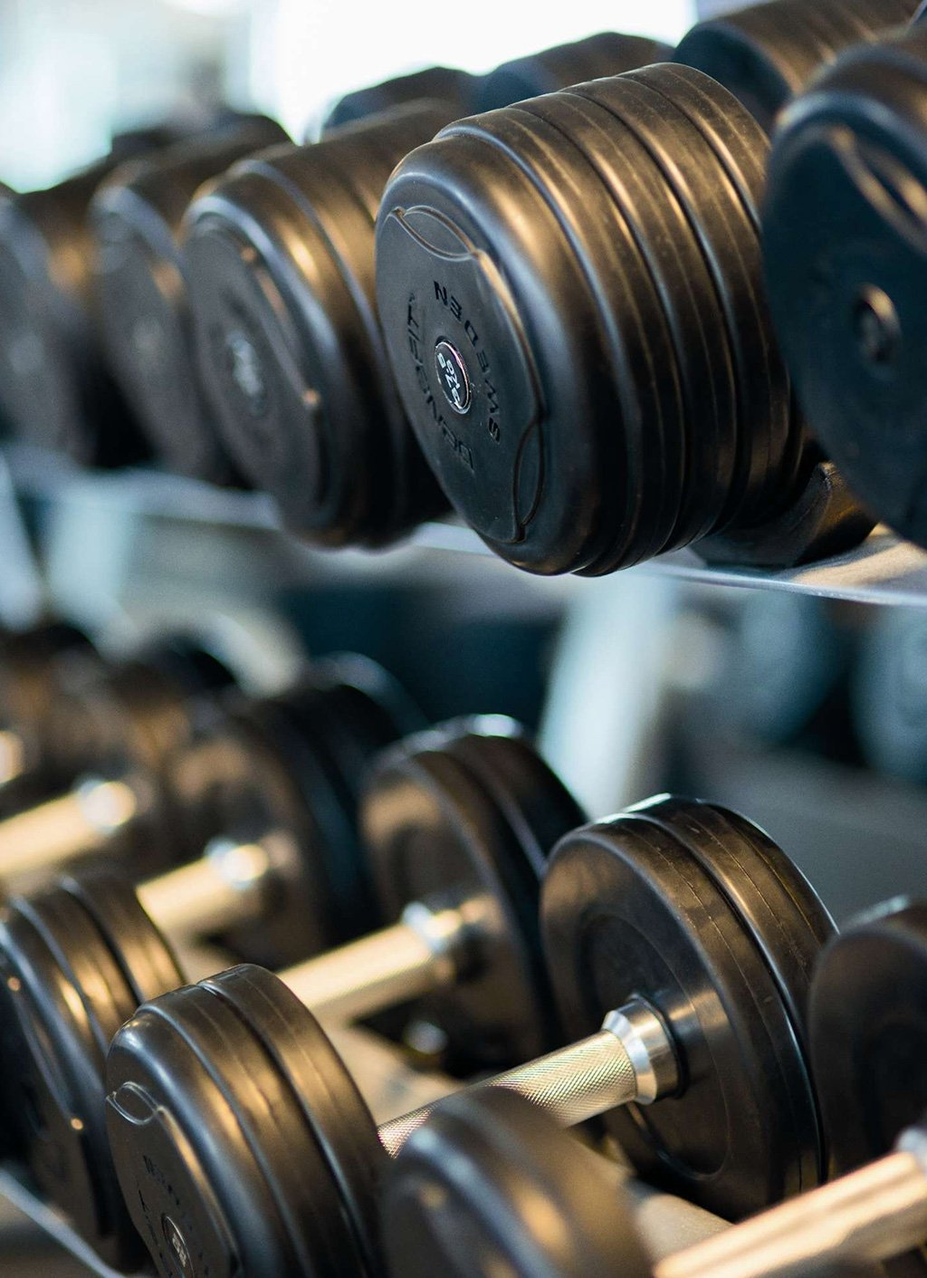 Lifestyle Gym Website Template Weights
