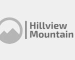 Professional Services Website Template Client Logo