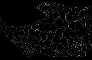 fish_publicdomain